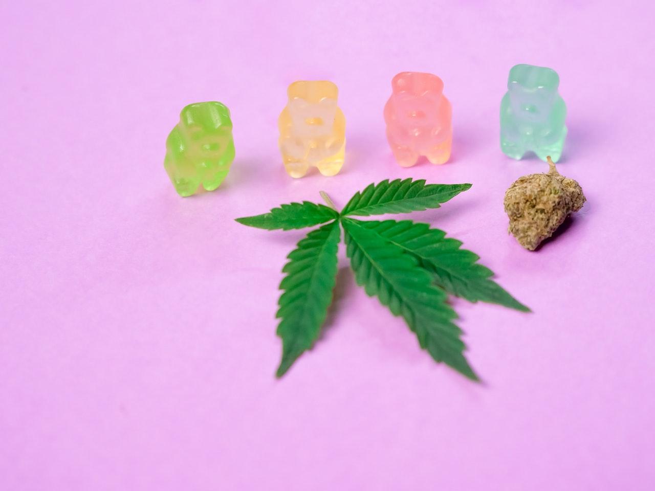 marijuana gummy bears next to pot leaf
